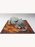 תמונה של הפיל
