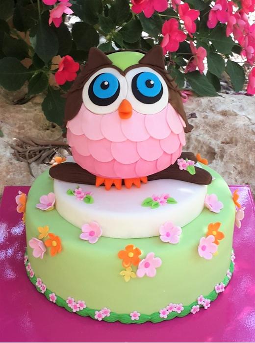 תמונה של עוגת יום הולדת ינשופית