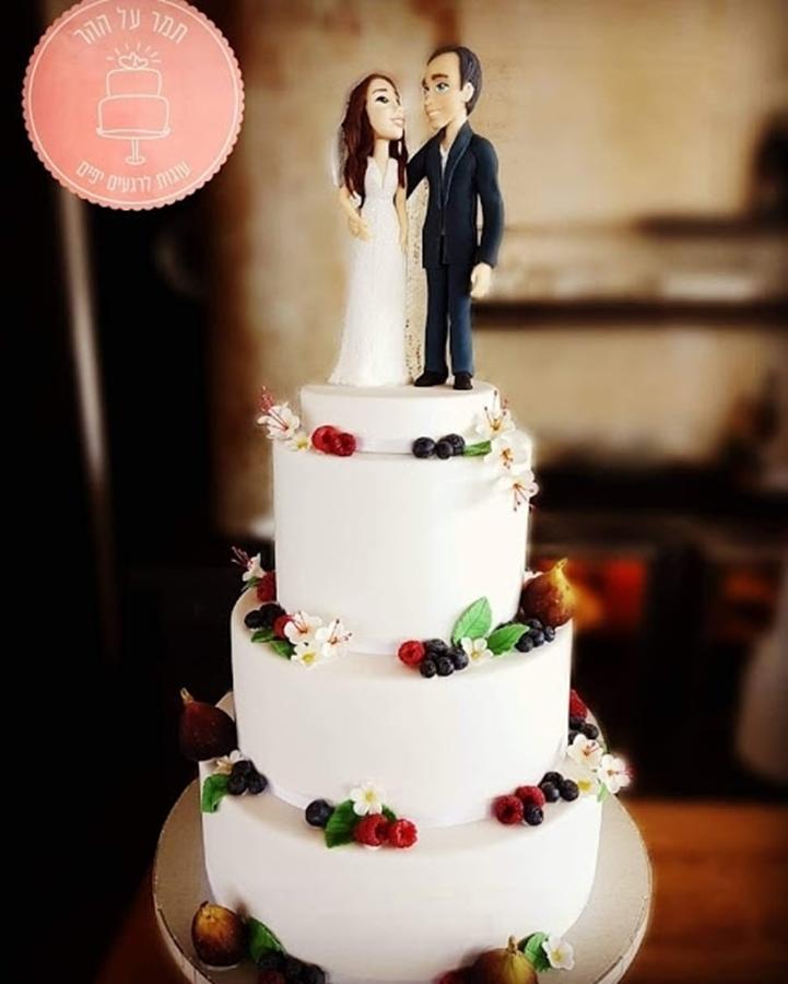 תמונה של עוגת חתונה חורפית